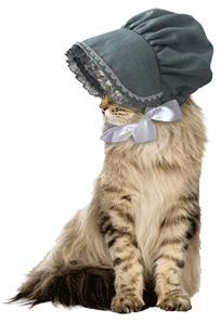 cat_bonnet