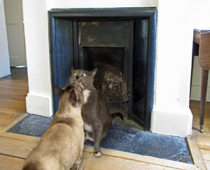 Mr. Bingley proposes to Jane Bennet in front of one of the fireplaces at Chawton